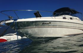 Sea Ray - 270 Sundancer